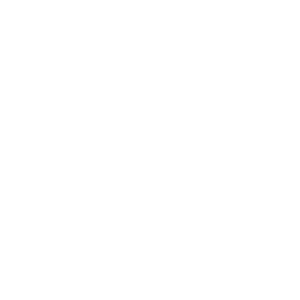 f_icon_wheel-130mm